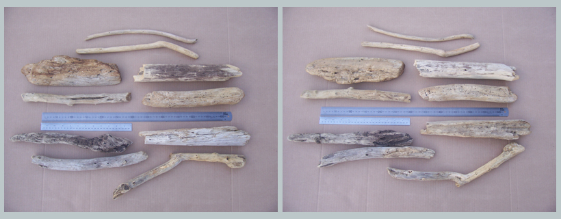 Driftwood for sale South Africa 29072914 002 30to45cm