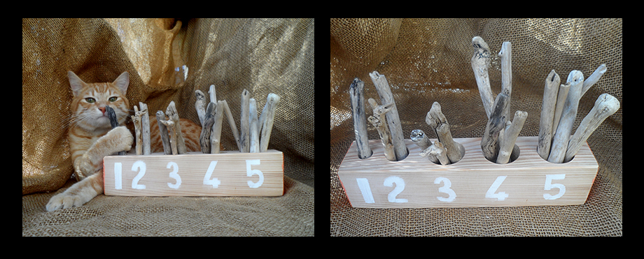 driftwood educational counting toy