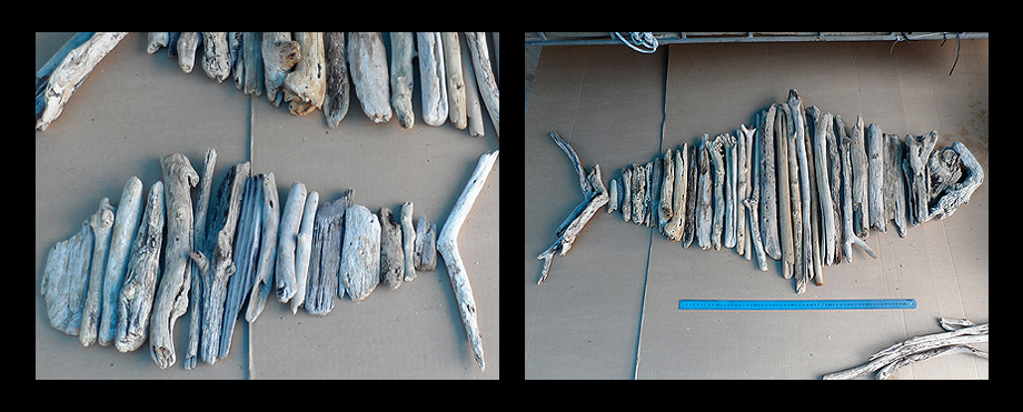 driftwood fish in South Africa