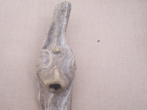 driftwood alien or elf