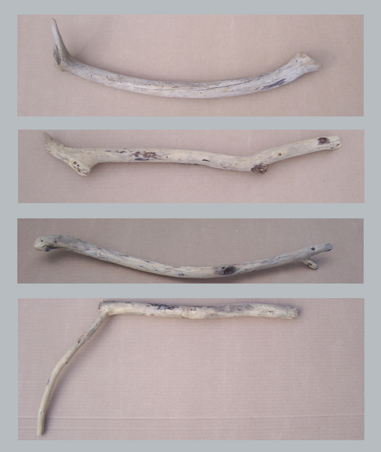 driftwood perfect for turning into back scratchers