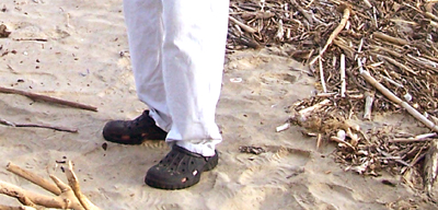 wear shoes when collecting driftwood