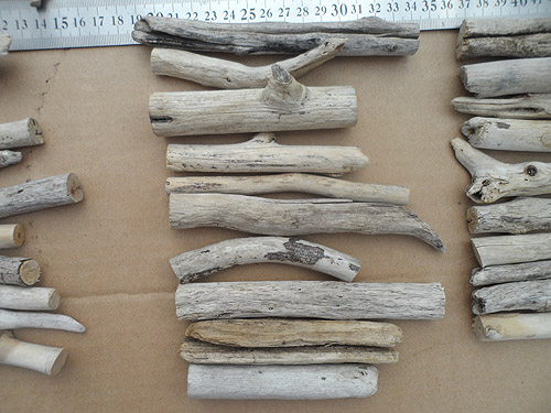 driftwood lot 150119A 10 pieces