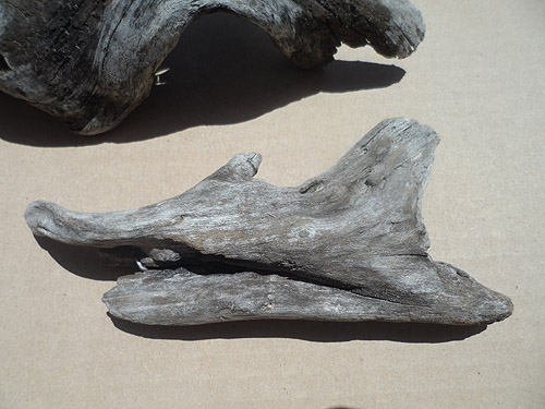driftwood lot 150119B - one piece