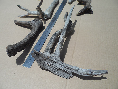 driftwood lot 150119C - rough bottom
