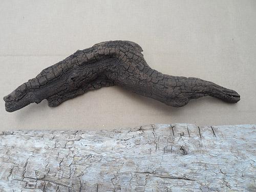 driftwood lot 150119D - dark piece