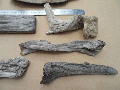 driftwood lot 150119D - interesting pieces