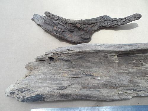 driftwood lot 150119D - thick bark