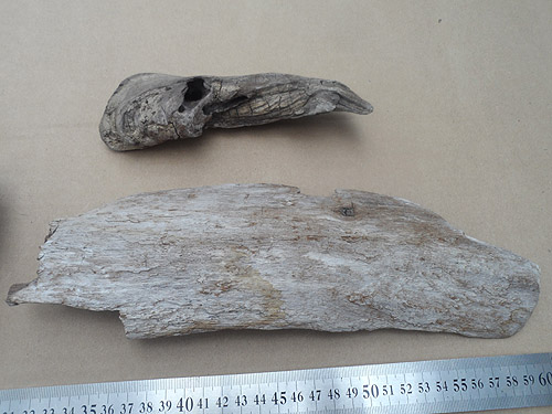driftwood lot 150119D - twist bark