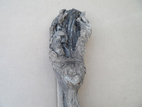 driftwood lot 150119G - face