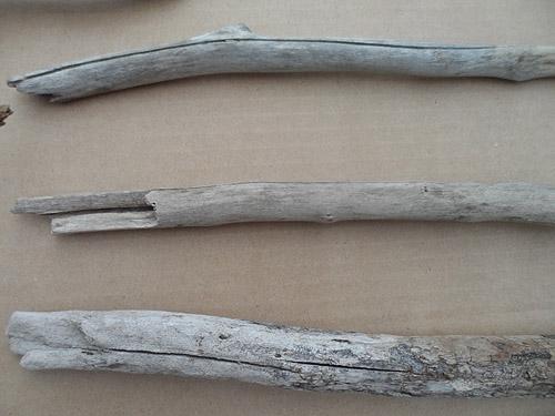 driftwood lot 230119A - cracks