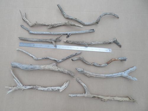 driftwood lot 230119B