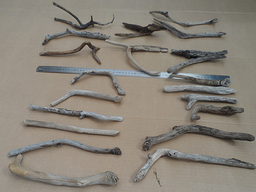 driftwood lot 250119A - from other side