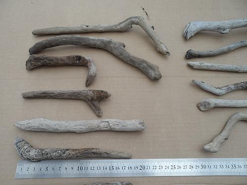 driftwood lot 250119A - top left
