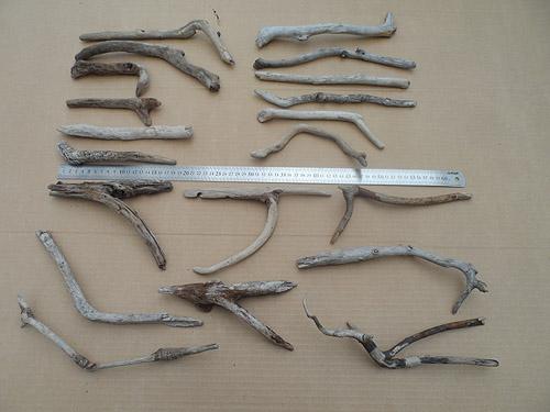 driftwood lot 250119A