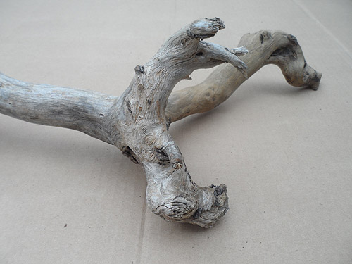 driftwood lot 250119B - 2nd piece