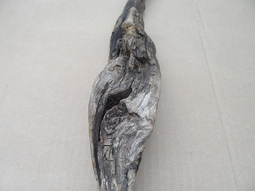 driftwood lot 250119D - odd face
