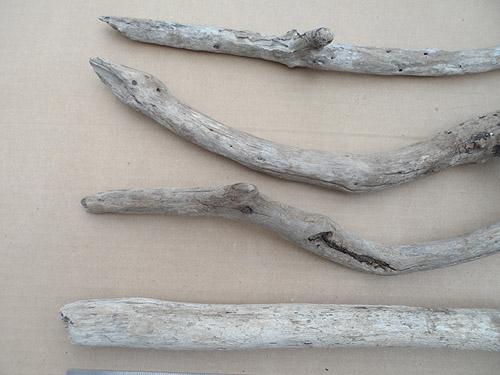driftwood lot 250119D - top left