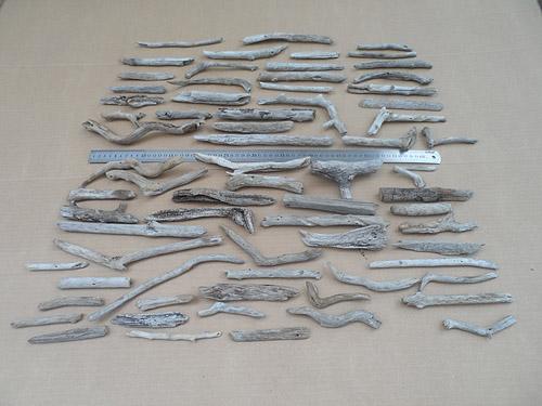 driftwood lot 130219B