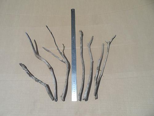 driftwood lot 130219C - arrangement 5