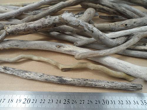 driftwood lot 130219C - close up photo