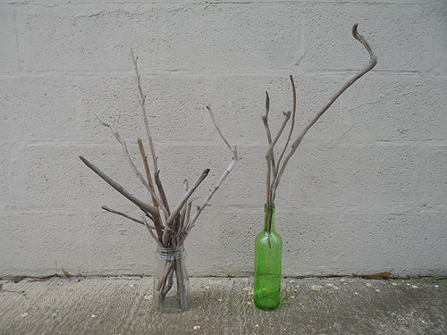 driftwood lot 130219C - driftwood in bottles