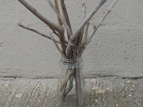 driftwood lot 130219C - driftwood in glass jar