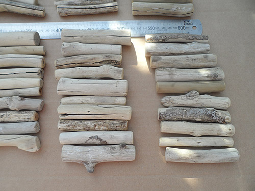 driftwood lot 020519A - bottom right