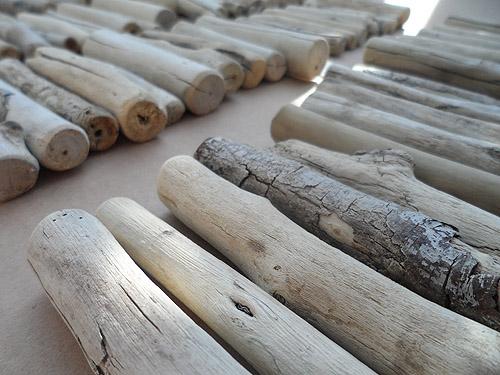 driftwood lot 020519A - closer view