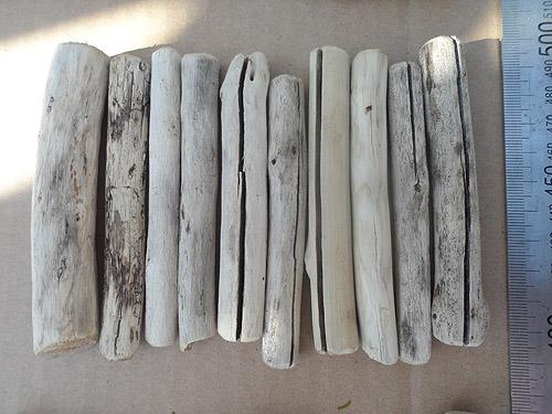 driftwood lot 020519A - ten pieces