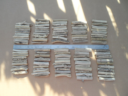 driftwood lot 020519A