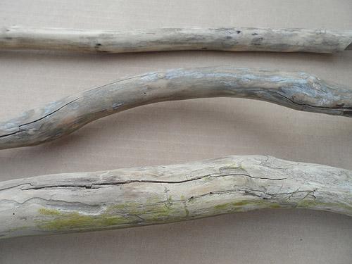 driftwood lot 170419A - cracks