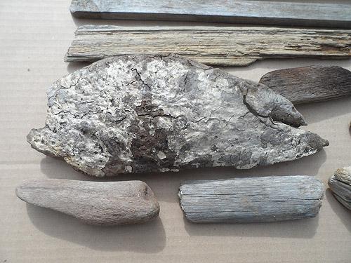 driftwood lot 170419B - thick bark